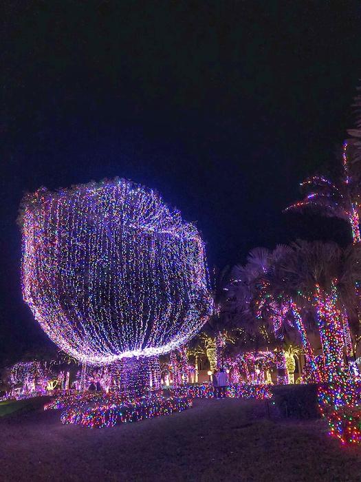Jensen Beach Mansion Christmas Lights 3