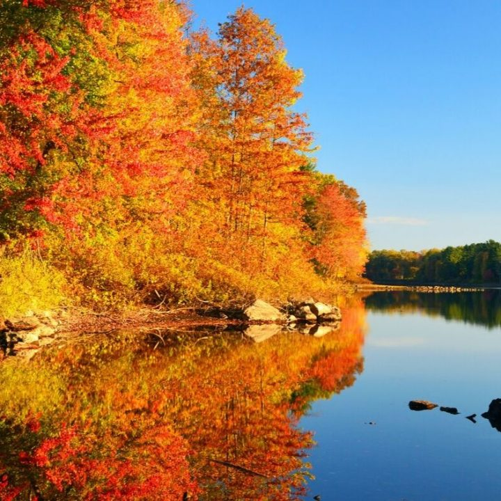 vermont fall foilage