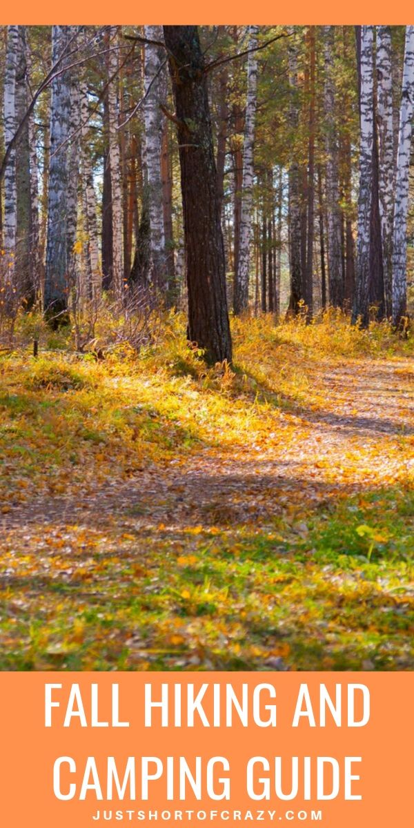 fall hiking pin