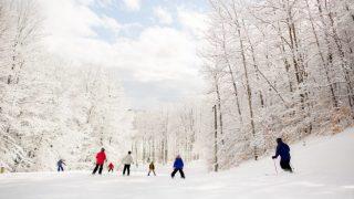 Michigan Winter Fun Snowcation