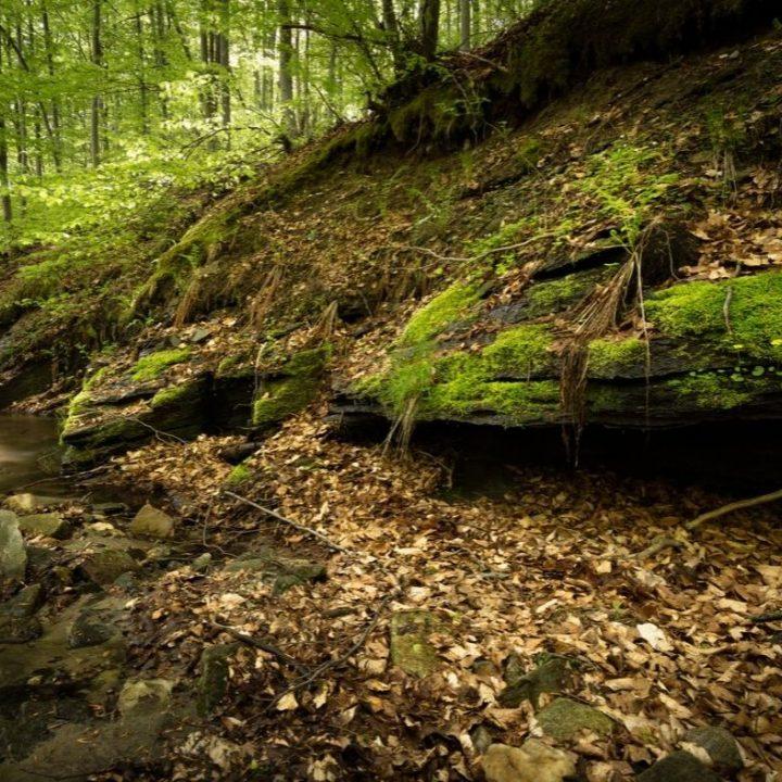 rock creek park dc