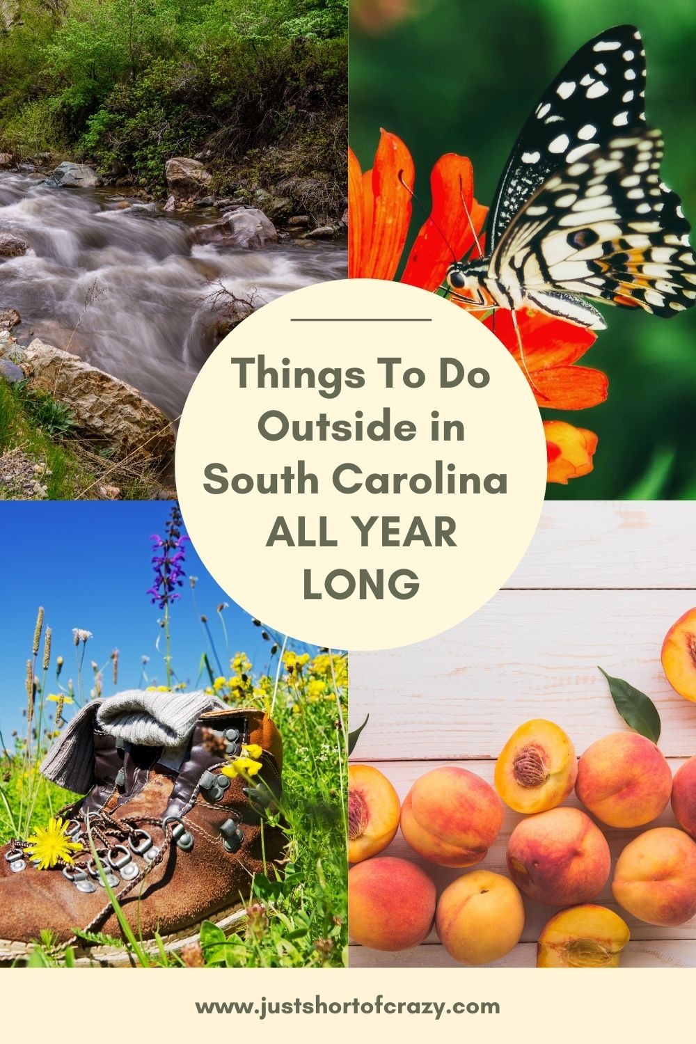 things to do outside in south carolina all year long