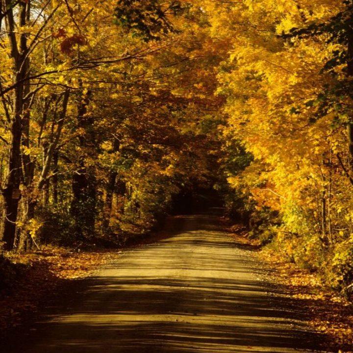 fall family getaways