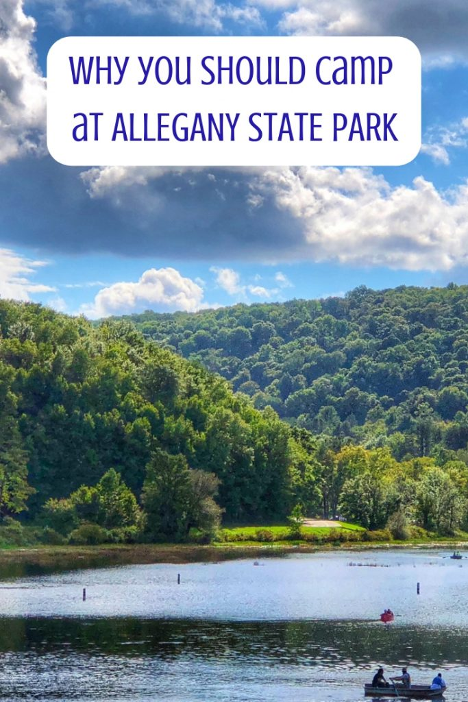 why you should camp at Allegany State Park