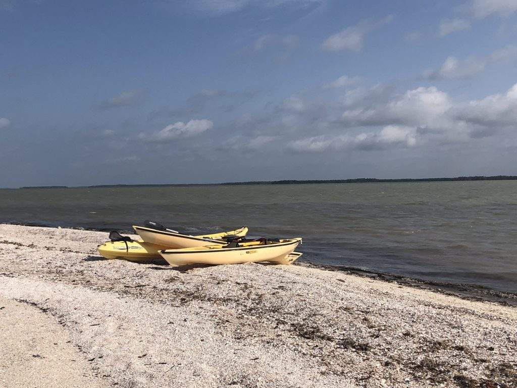 yellow kayaks on the shore of an island in the everglades national park