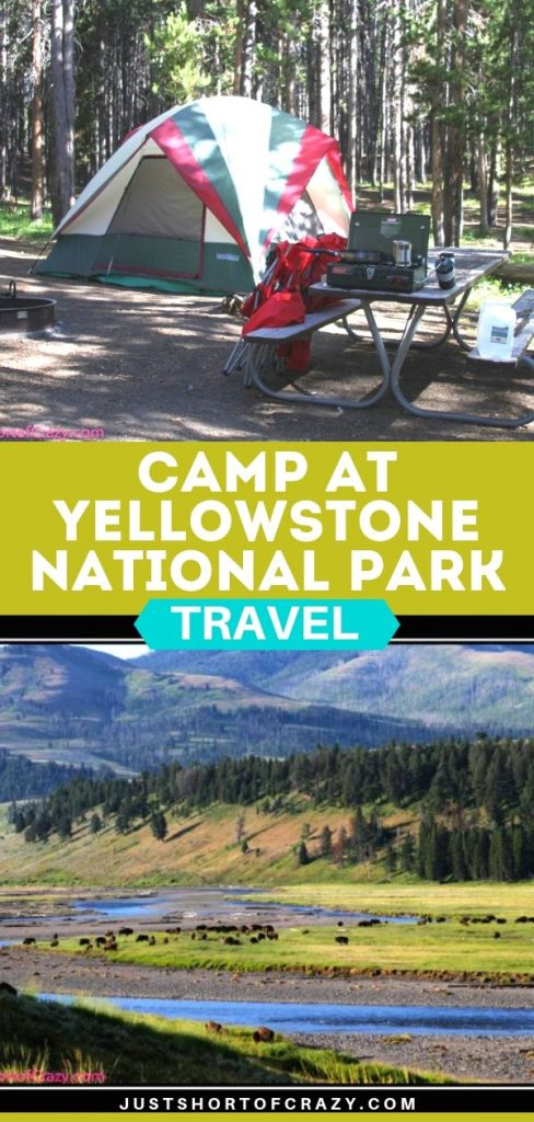 camp at yellowstone National Park